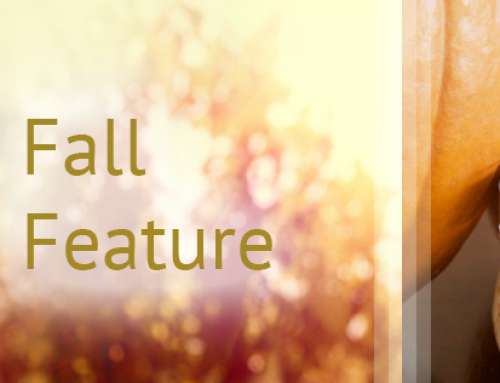 Embrace Autumn with our Fall Feature