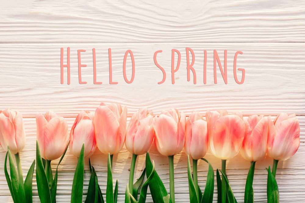 Namaste Day Spa Kelowna \ What's New | Hello Spring